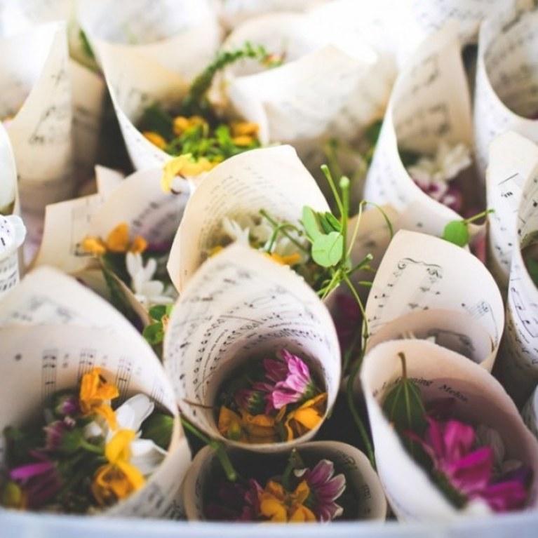 portariso etico, fiori, petali, bacche