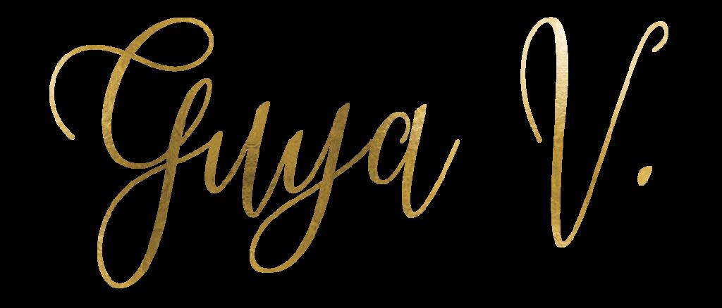 Questa immagine ha l'attributo alt vuoto; il nome del file è nomeGuya1-1-1024x438.png